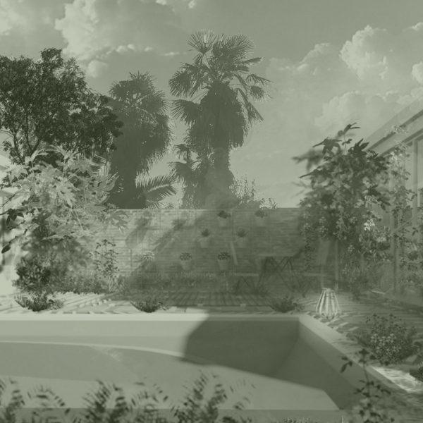 parcelle-8-architecture-paysage-bordeaux-paysagiste-paysagisme-archi-architecte-exterieur-interieur-plantes-piscine-vegetal-vegetation-paysager